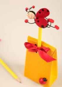 Ladybird birthday Favour